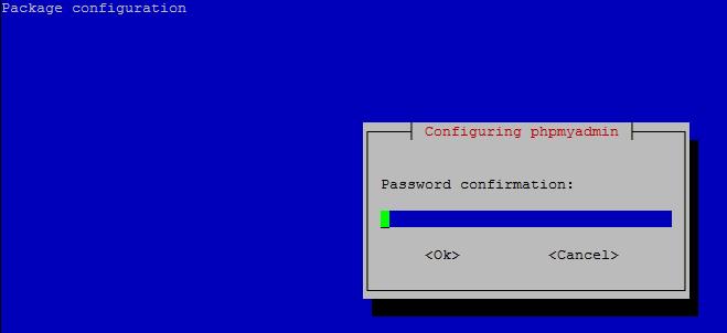 Configuring phpMyAdmin: MySQL/MariaDB application password for the phpmyadmin confirmation